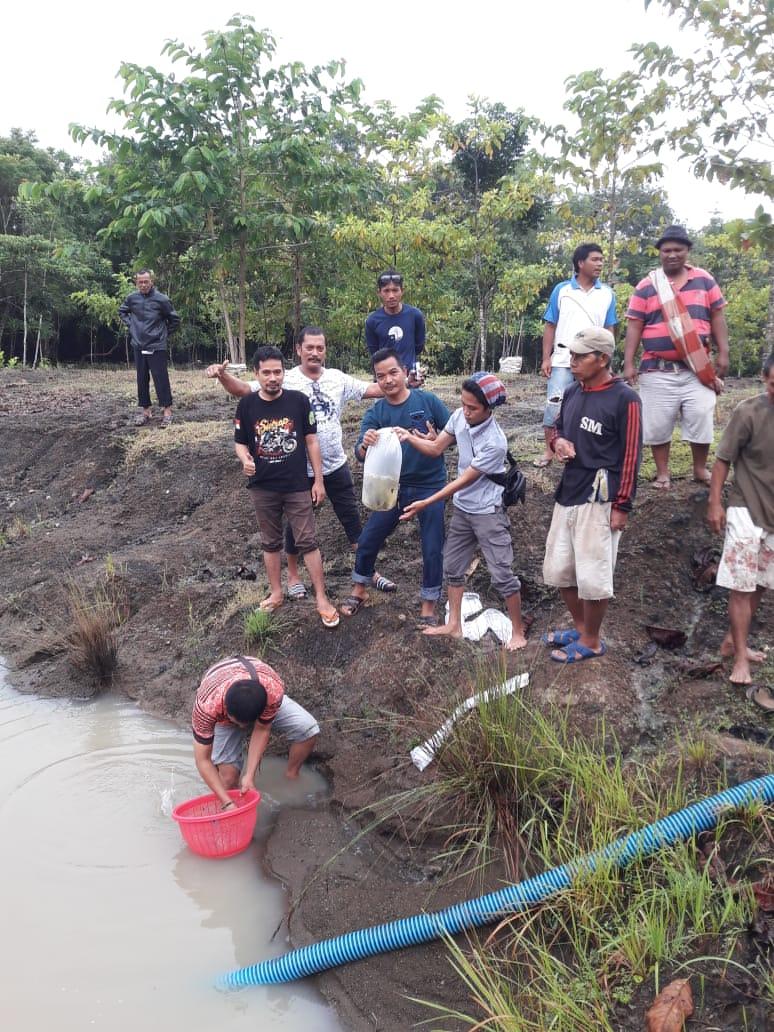 Disnakkan Sidrap Serahkan Benih Ikan Mas ke Kelompok Perikanan Sitiroang